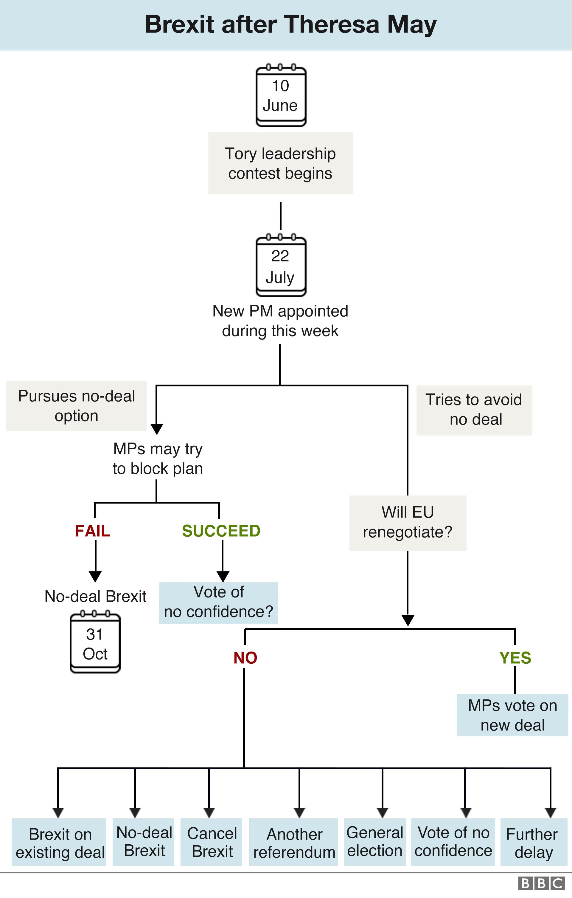 _107319974_brexit_flowchart_next_steps_10june_v2_-3x640-nc