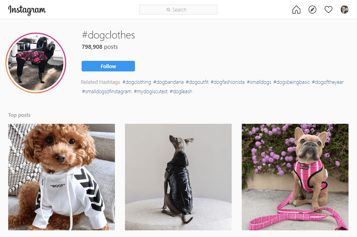 Instagram_#dogclothes