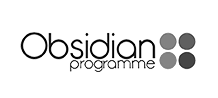 Obsidian programme